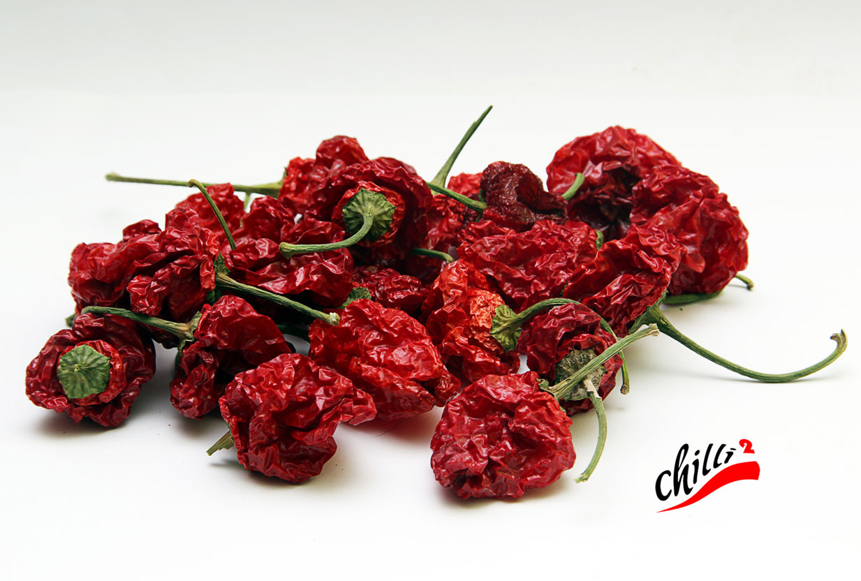 Sušené chilli - foto M. Bohaček